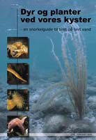 Køb den i dit lokale dykkercenter