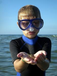 Max har selv fanget en krabbe på det lave vand