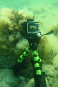 Når jeg tager fotos eller video med GoPro, bruger jeg ofte en lille tripod for at holde kameraet stille
