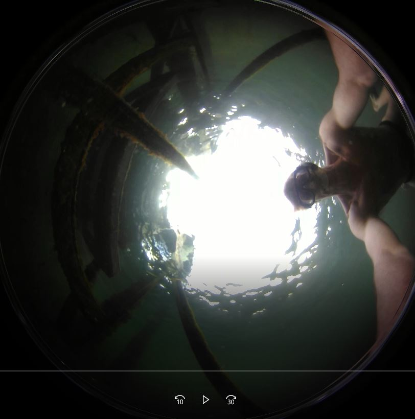 using a 360 video camera under water