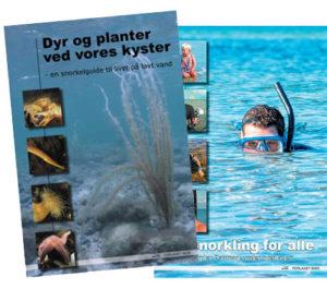 forside af hæfterne Snorkling for alle og Dyr og planter ved vores kyster