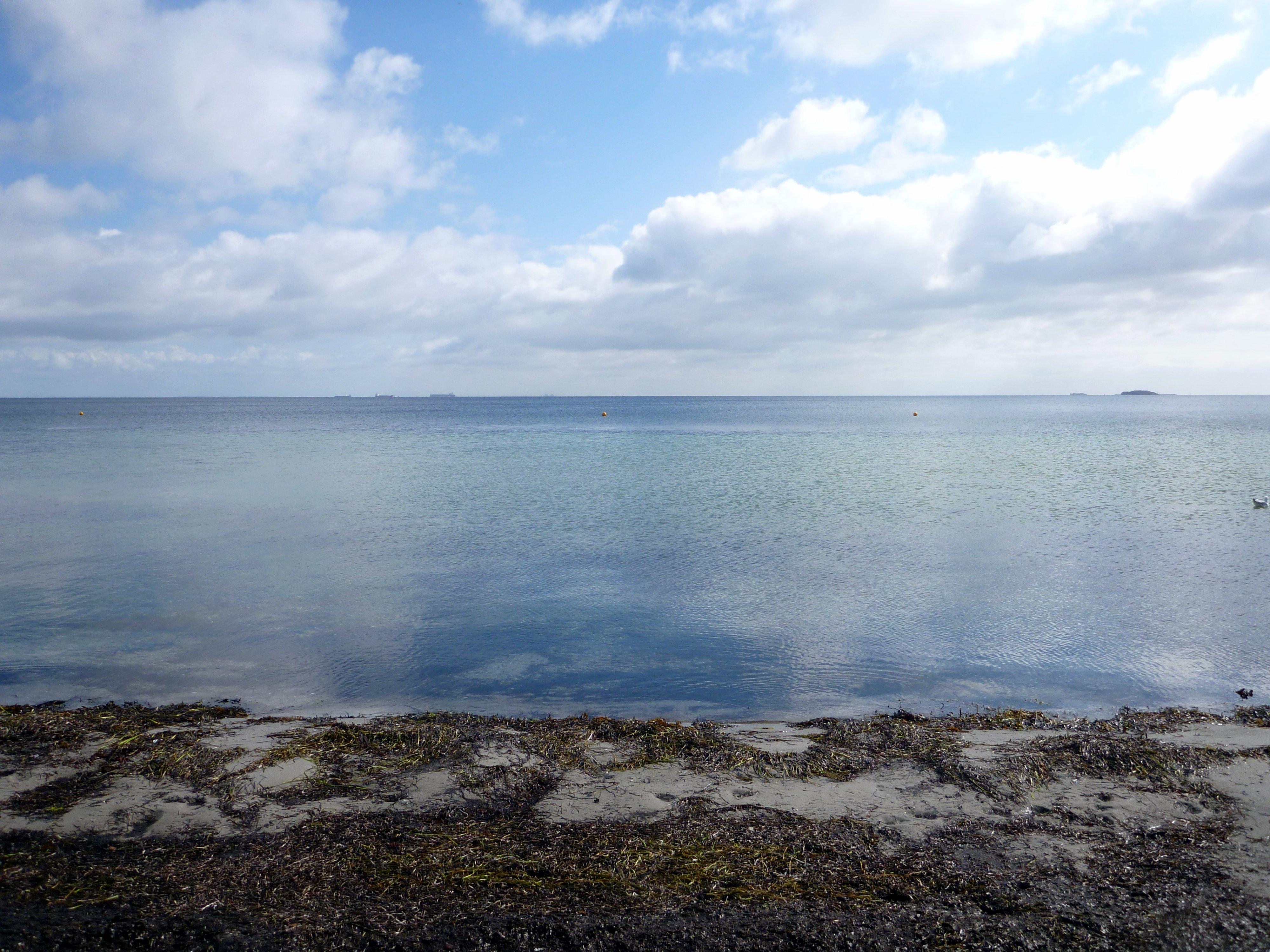 Svanemølle stranden på en stille dag